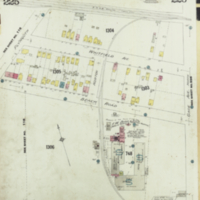 [Insurance plan of the city of Hamilton, Ontario, Canada] : [sheet] 225