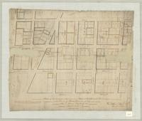 Plan of the survey of that part of David Kirkendall's Survey in the town of Hamilton