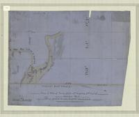 Copy of plan of survey of lots nos. 5 and 6 in 2nd. Conn. of Flamboro West being part of the late Honble. Jas. Crooks Estate