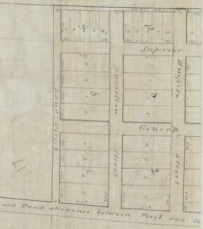 Plan of parks survey upon lot no. 9 in First Concession of the Township of Barton [1 map in 4 segments]