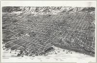 Bird's eye view of the City of Hamilton : Province Ontario, Canada, 1893
