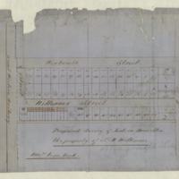Proposed survey of lots in Hamilton, the property of J. M. Williams