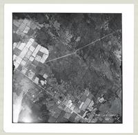 [Regional Municipality of Hamilton-Wentworth and surrounding area, 1955] : [Flightline 4323-Photo 197]