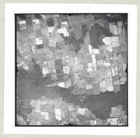 [Regional Municipality of Hamilton-Wentworth and surrounding area, 1955] : [Flightline 4317-Photo 73]
