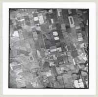 [Regional Municipality of Hamilton-Wentworth and surrounding area, 1955] : [Flightline 4313-Photo 113]