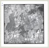 [Regional Municipality of Hamilton-Wentworth and surrounding area, 1955] : [Flightline 4314-Photo 225]