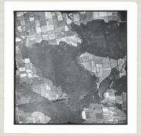 [Regional Municipality of Hamilton-Wentworth and surrounding area, 1955] : [Flightline 4317-Photo 76]