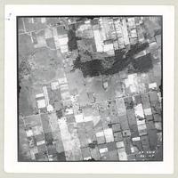[Regional Municipality of Hamilton-Wentworth and surrounding area, 1955] : [Flightline 4314-Photo 104]