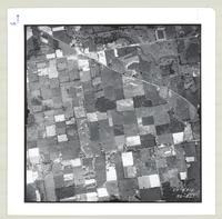 [Regional Municipality of Hamilton-Wentworth and surrounding area, 1954] : [Flightline 4312-Photo 227]