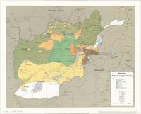 Afghanistan Major Insurgent Groups